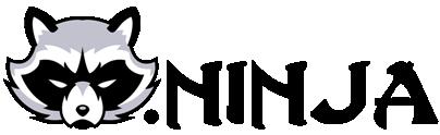 Raccoon Ninja Logo