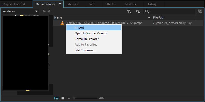 Adobe Premiere Pro: Import File